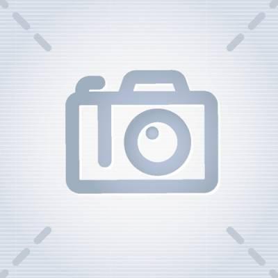 EXTERIOR - Light Lenses, Seals & Parts - 211-321
